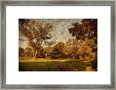 Ridge Walk - Holmdel Park Framed Print