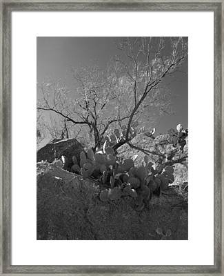 Framed Print featuring the photograph Ridgeline Two by Louis Nugent