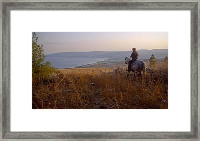 Riding Horse By Lake Galilee At Sunset Framed Print by Daniel Blatt