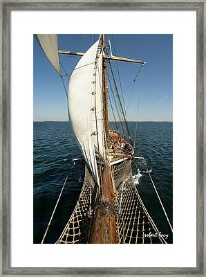 Riding The Breeze Framed Print