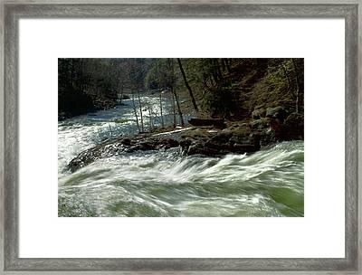Riding The River Framed Print by Karol Livote
