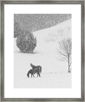 Riding The Storm Out Framed Print by Coby Cooper