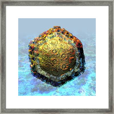 Rift Valley Fever Virus 2 Framed Print