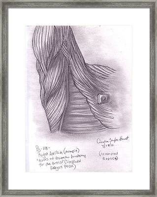 Right Axilla Framed Print by Cecelia Taylor-Hunt
