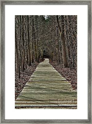 Right Path Framed Print by Gregory Dragan