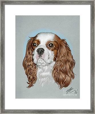 Riley Framed Print by Marshall Robinson