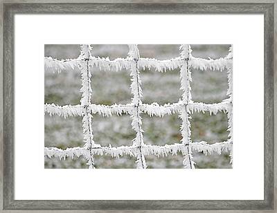 Rime Covered Fence Framed Print