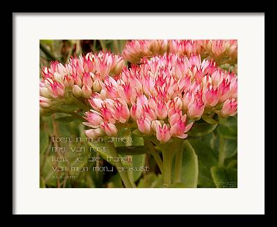 Bloembed Framed Prints