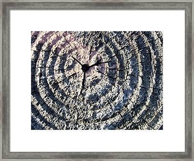 Rings Of Time Framed Print by Jan Lawnikanis