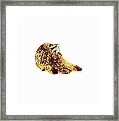 Ripe Bananas Framed Print by Kevin Curtis