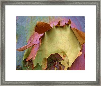 Ripped Apart Framed Print