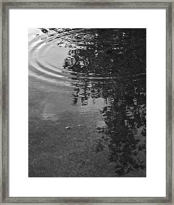 Framed Print featuring the photograph Rippled Tree by Kume Bryant