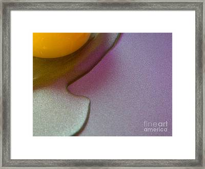 Framed Print featuring the photograph Rise And Shine by Everette McMahan jr