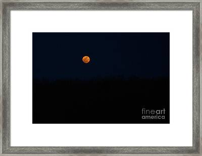 Framed Print featuring the photograph Rise Of The Harvest Moon by Julie Clements
