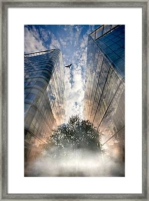 Rise Framed Print by Richard Piper