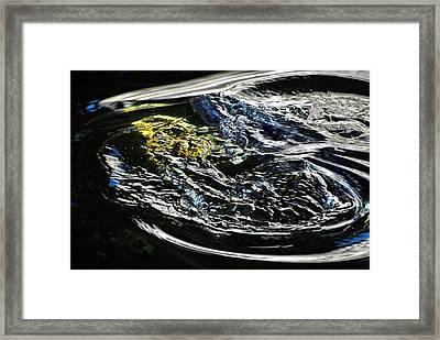 Rising Koi Framed Print by Don Mann