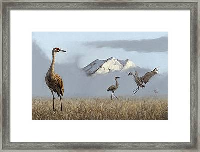 Rites Of Spring Framed Print