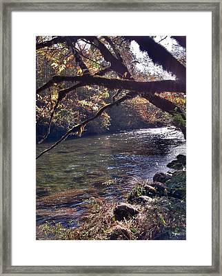 Rivee View Framed Print by Janice Spivey