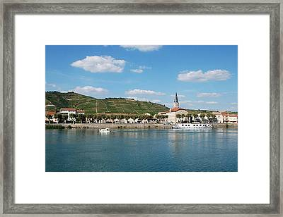 River And Vineyard Framed Print by Alain Cachat