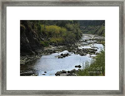 River At The Golf Course Laguna Framed Print by Nelly Marziale