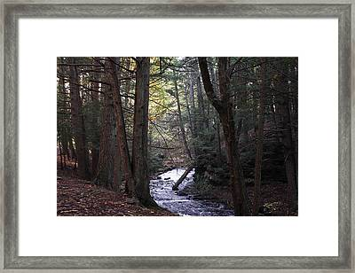 River Below Grayville Falls 1 Framed Print
