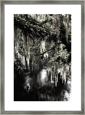 Framed Print featuring the photograph River Branch by Steven Sparks