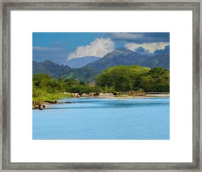 River Crossing Framed Print by Delores Knowles