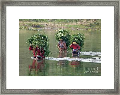 River Crossing Framed Print by Louise Peardon