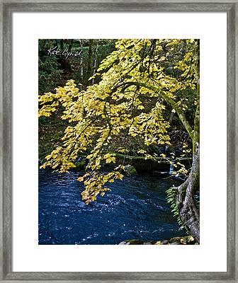 River Glow I Framed Print