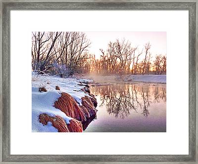 Framed Print featuring the photograph River Grasses Colorado by William Fields