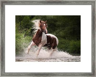 River Horse Framed Print