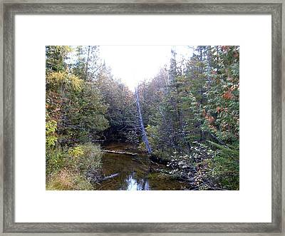 River In The Woods Framed Print by Ted Kitchen