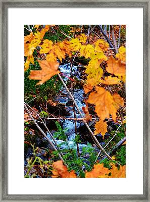 River Framed Print by Josee Dube