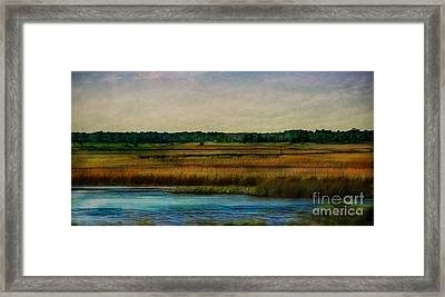 River Of Grass Framed Print by Judi Bagwell