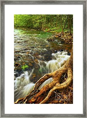 River Rapids Framed Print