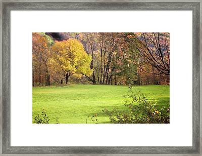 Framed Print featuring the photograph River Road Field by Tom Singleton