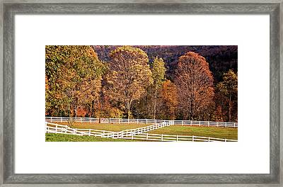 Framed Print featuring the photograph River Road by Tom Singleton