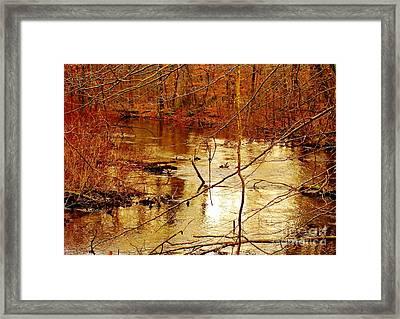 River Russel Framed Print by Lisa  Ridgeway
