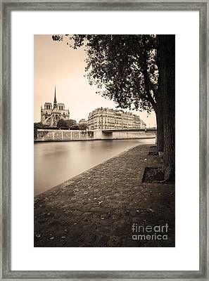 River Seine And Cathedral Notre Dame Framed Print by Brian Jannsen