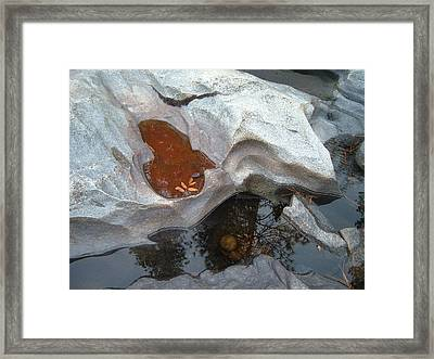 River Stone Framed Print by Naxart Studio