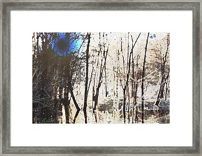 River Trees Framed Print by Donna  Smith