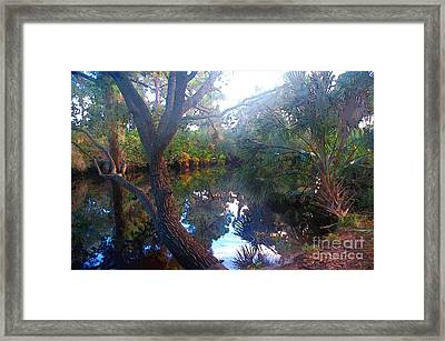 Riverbank Reflections1 Framed Print