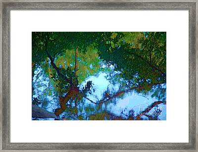 Riverbank Reflections2 Framed Print