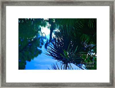 Riverbank Reflections3 Framed Print