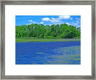 Riverside Park 4 Framed Print by Dave Dresser