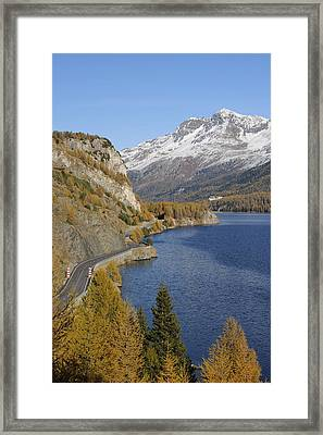 Road Along Lake Sils In Autumn, Piz Surlej And Munt Arlas, St Moritz, Maloja District, Engadin, Graubunden, Switzerland Framed Print by Martin Ruegner