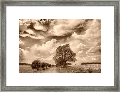 Road And Fields Framed Print