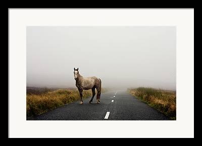 Road Marking Framed Prints
