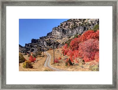 Fall - Blacksmith Fork Canyon - Utah Framed Print by Gary Whitton