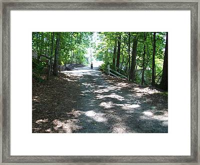 Framed Print featuring the photograph Road Less Traveled by Lou Ann Bagnall